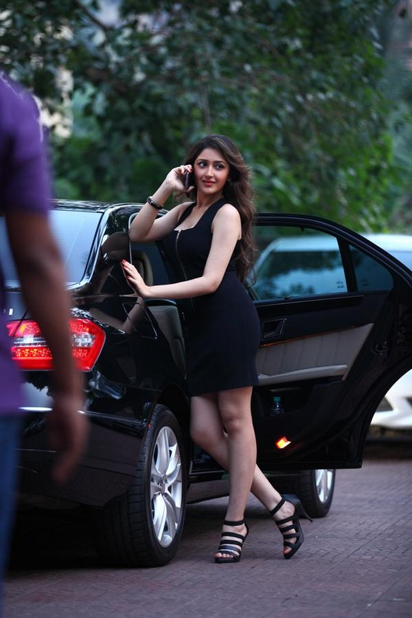 A perfect picture of Sayesha, the newcomer who makes her debut in Ajay Devgn's film Shivaay