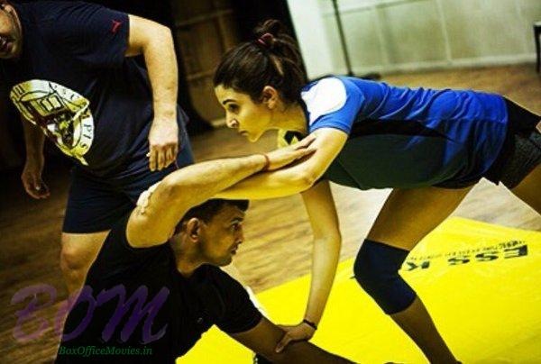 Anushka Sharma stunt in Sultan