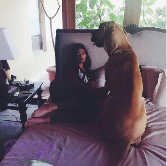 Athiya Shetty with a huge dog