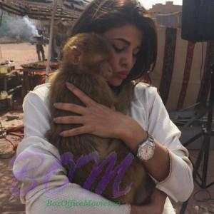 Jacqueline Fernandez love this Moroccan buddy named Coco