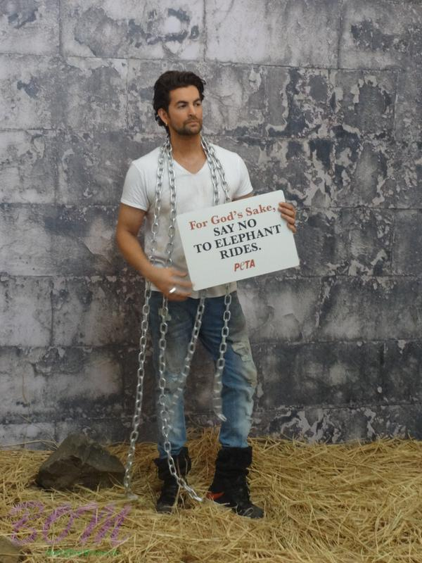 Neil Nitin Mukesh - Say no to Elephant Rides, for PETA