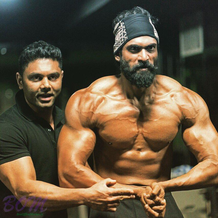 Rana Daggubati new bigger meaner and stronger body for Baahubali 2