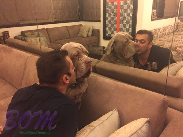 Salman Khan mirror moment with his DOG