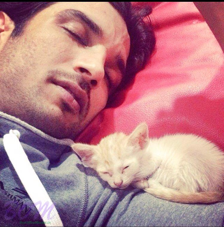 Sushant Singh Rajput Cute Selfie With A Little Meow