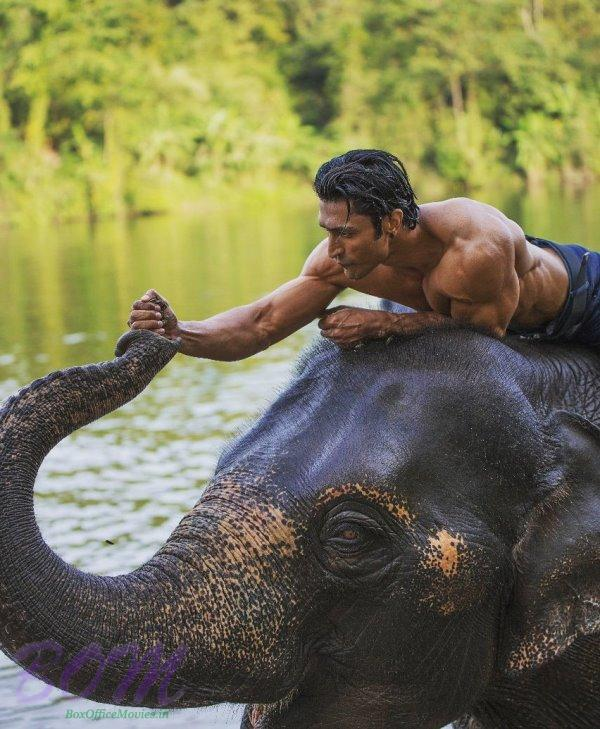 Vidyut Jammwal promises to take care these stunning creatures for life