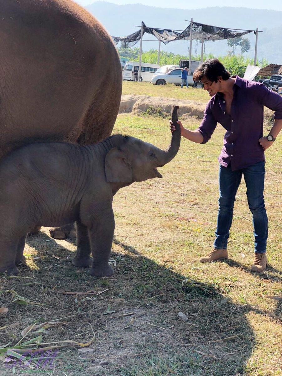 Vidyut Jammwal‏ with his adorable buddy from the sets of Junglee