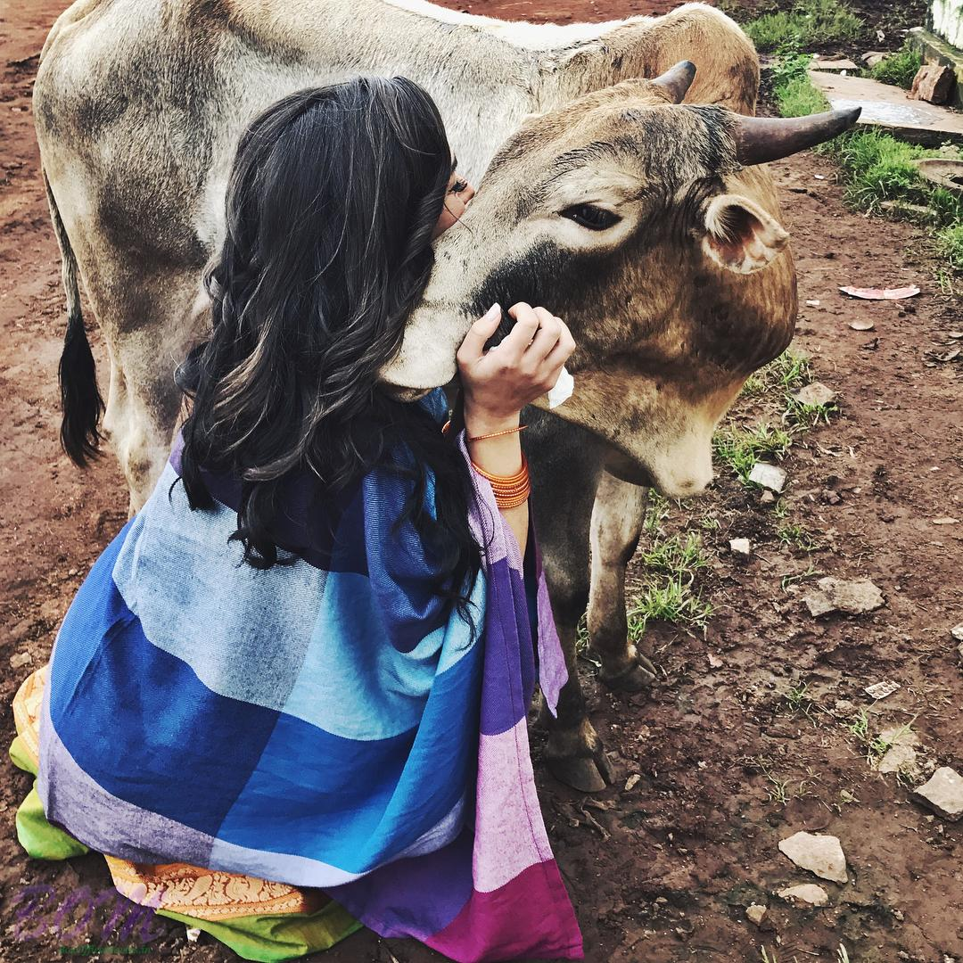Amy Jackson love for animals is visible in many occasions.